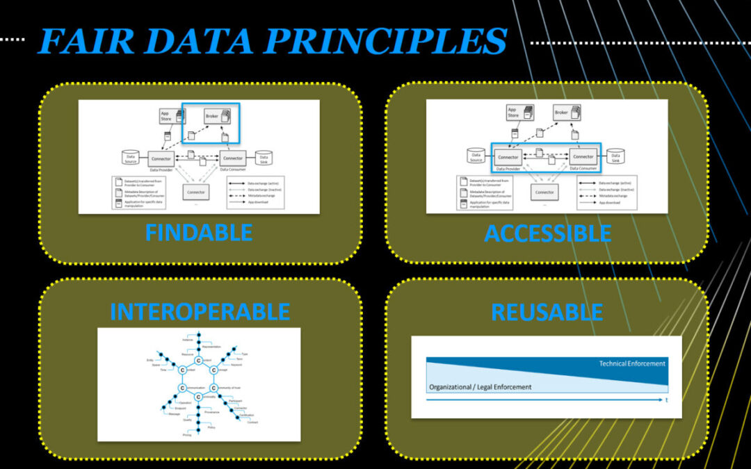 IDS and the FAIR DATA PRINCIPLES